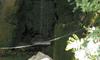 眞名井の滝